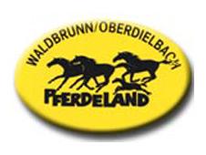 Reitabzeichen beim RSC Pferdeland thumbnail