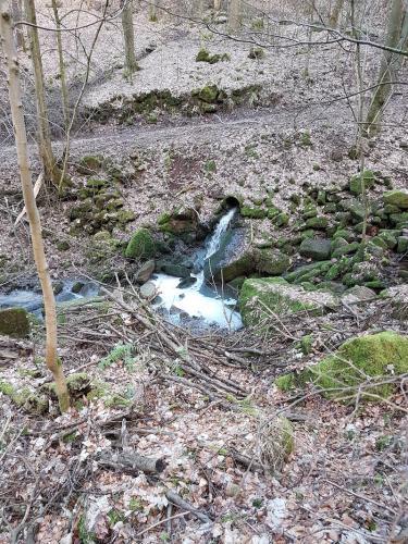 Kläranlage Waldkatzenbach